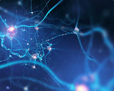 מערכת העצבים ההיקפית
